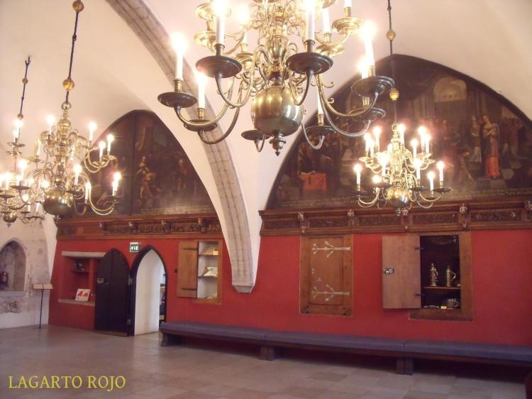 2011-07-05 011 LAGARTO ROJO