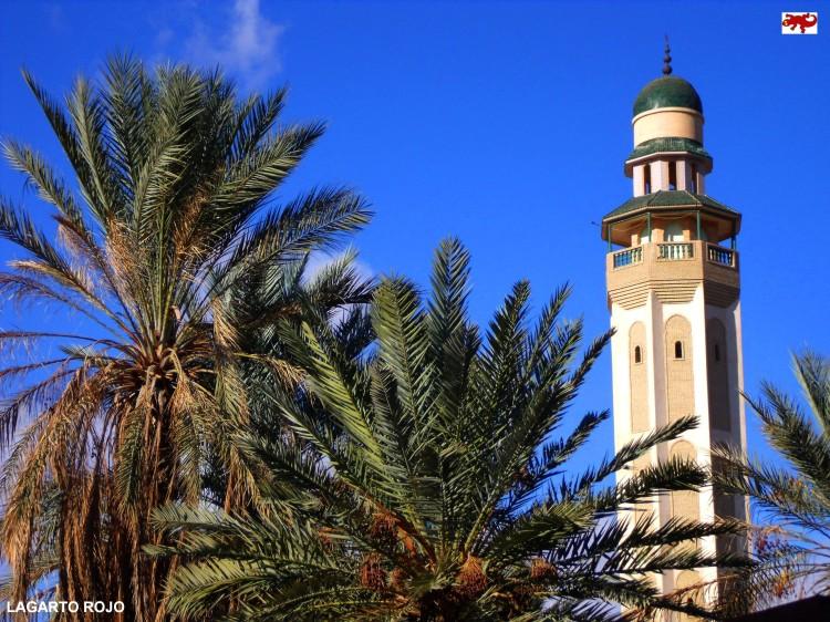 Desierto de Túnez