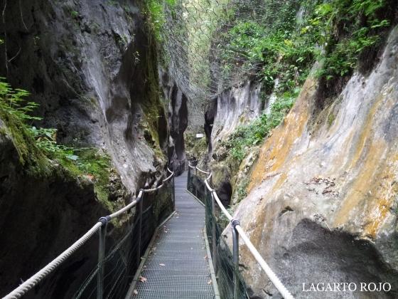 En todo el recorrido caminamos entre la pasarela y la red