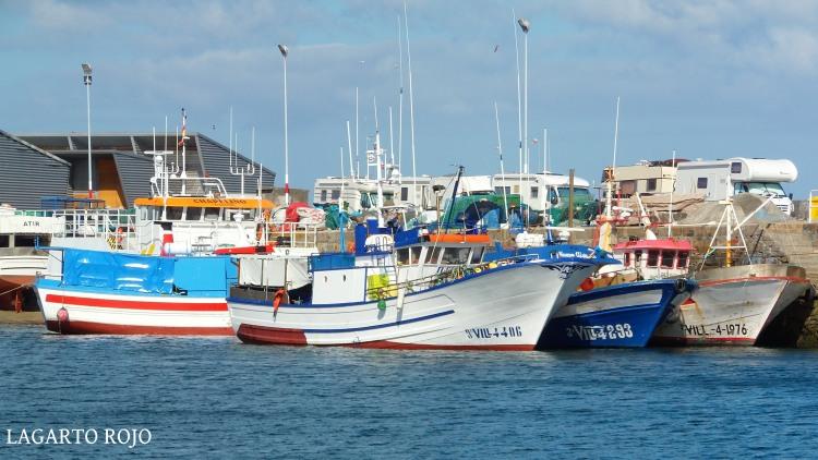 Barcos pesqueros en el puerto de El Grove