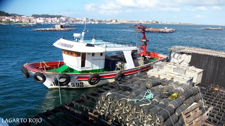 Un pequeño barco atracado junto a una batea dispuesto a comenzar la faena del día. Impresionante el nombre de la intrépida embarcación: O Tornado
