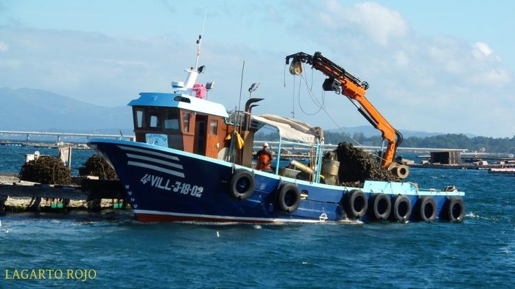 Los barcos de la ría incorporan unas pequeñas grúas para acarrear los cargamentos de moluscos