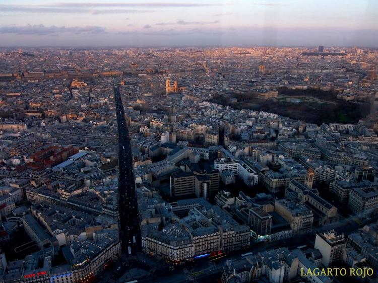 Louvre, Sagrado Corazón, San Sulpicio, Jardín de Luxemburgo y catedral de París