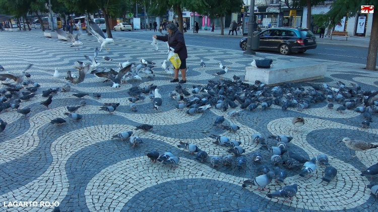 Plaza de Don Pedro IV de Lisboa