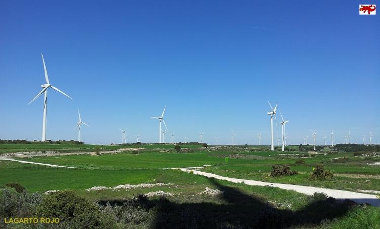 Molinos de viento en Fuendetodos