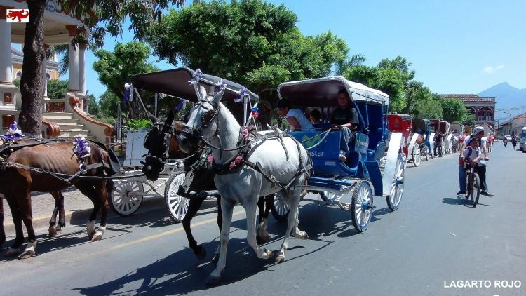Carruaje en Granada