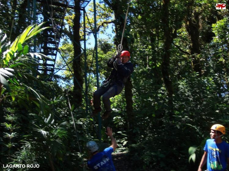 Tarzán en Monteverde