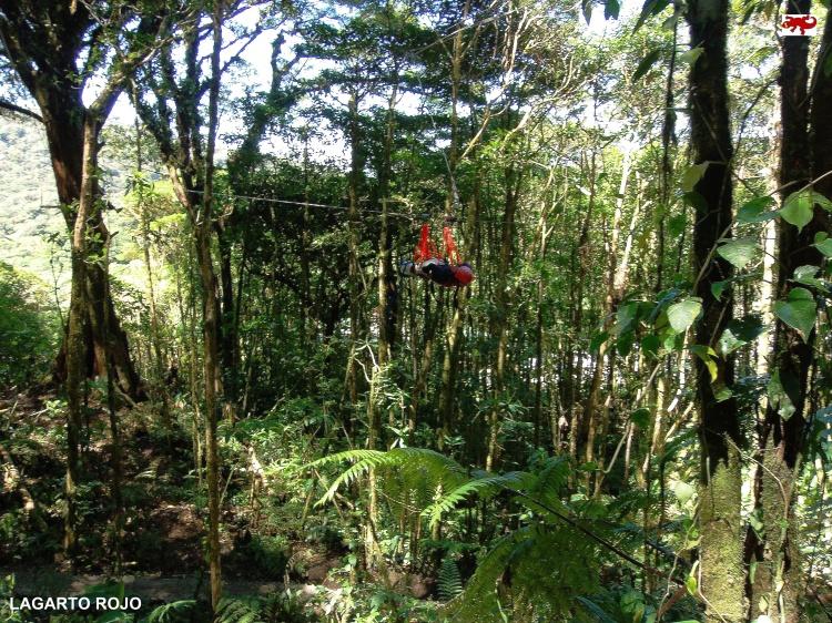 Supermán en Monteverde