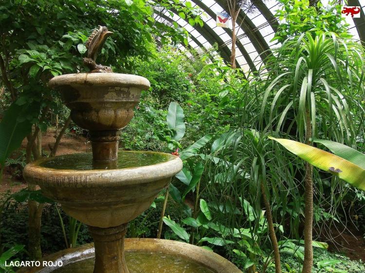 Jardín de mariposas de Monteverde