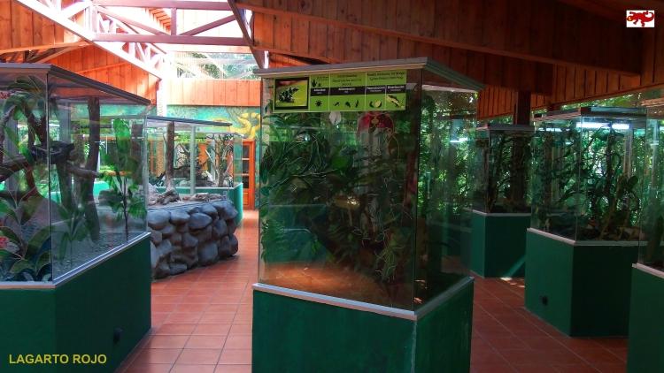 Serpentario de Monteverde