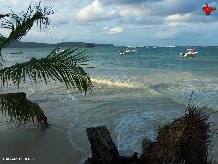 Playa dominicana